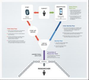 Figure 2: Litmus Health Technology Workflow